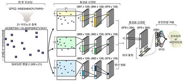 사인자 예측을 위한 심층 학습 모델의 네트워크 구조.[사진= KAIST]