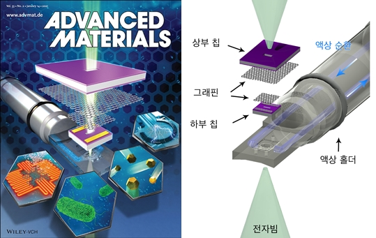 국제학술지 어드밴스트 머터리얼스 표지(왼쪽)와그래핀 액상 유동 칩의 모식도(오른쪽) [사진=KAIST 제공]