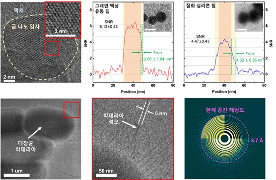그래핀 액상 유동 칩을 이용해 관찰한 나노 입자 및 박테리아의 전자현미경 이미지 [사진=KAIST 제공]