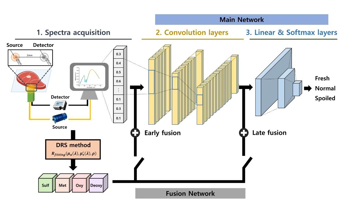 GIST 연구진이 인공지능 광기술로 육류 신선도를 측정하는 방법을 제안했다.[사진=GIST 제공]